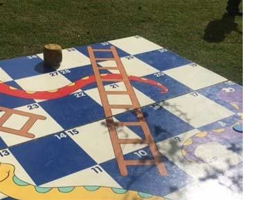 Hire giant snakes and ladders