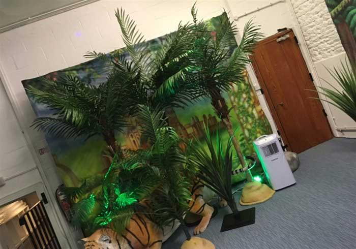 Jungle Theme Night