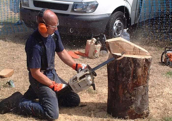 Chainsaw carving shows