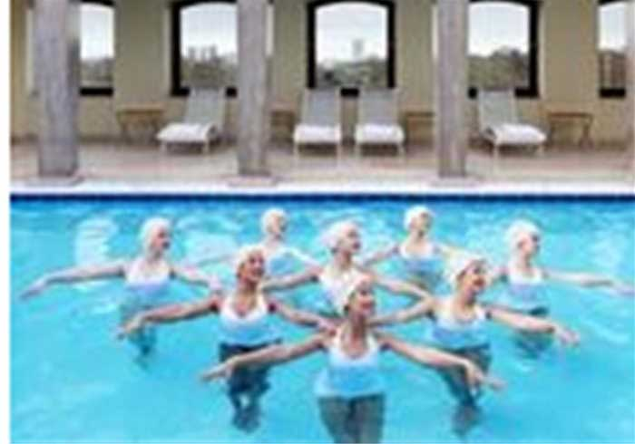Synchronised Swimming Show
