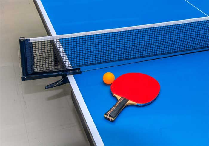 Table tennis table and bat
