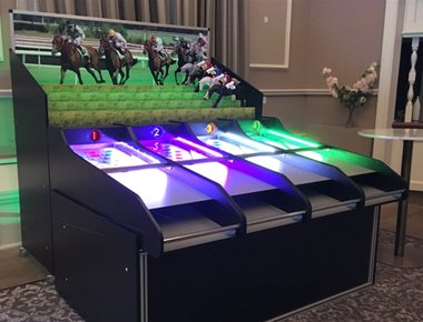 Hire roll a ball donkey derby game