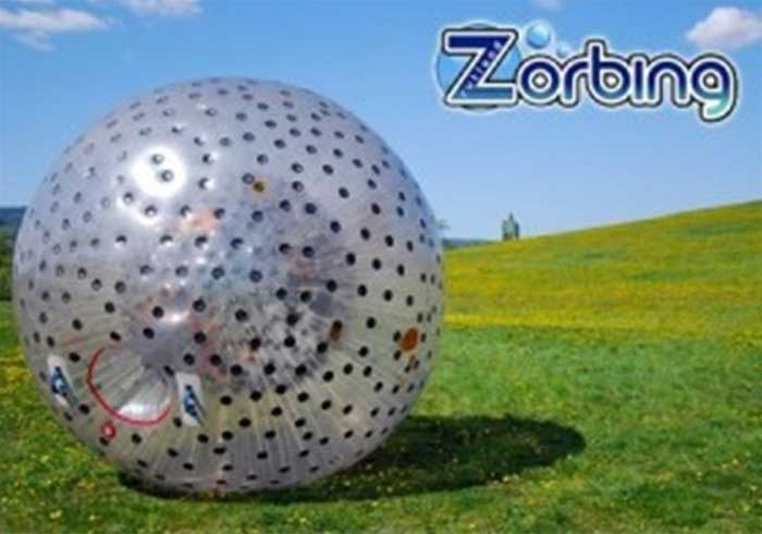 Zorb Ball on grass
