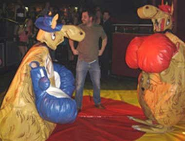 Hire Kangaroo Boxing Fun